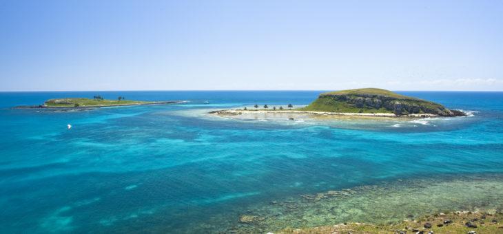 Viva o Parque Nacional Marinho dos Abrolhos!