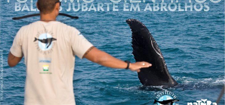 Seja um pesquisador de baleias por um final de semana!